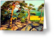 Pines On The Rocks Greeting Card
