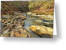 Piney Creek Ravine Revisited 1 Greeting Card