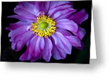 Pink 1 Greeting Card
