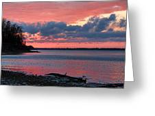 Pink And Blue Sunset Greeting Card