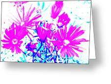 Pink And Blues Greeting Card