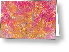 Pink And Orange Autumn 2 Greeting Card