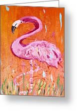 Pink And Orange Flamingo  Greeting Card