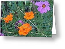 Pink And Orange Merger Greeting Card