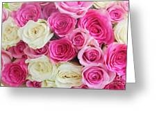 Pink And White Roses Bunch Greeting Card