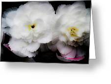Pink And Yellow On White 3 Greeting Card