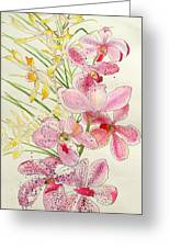 Pink And Yellow Orchids Greeting Card