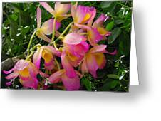 Pink And Yellow Tropical Flowers Greeting Card