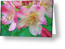 Pink Azalea Greeting Card