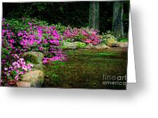 Pink Azaleas At The Azalea Festival Greeting Card