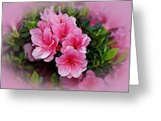 Pink Azaleas Greeting Card by Sandy Keeton