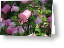 Pink Bell Greeting Card