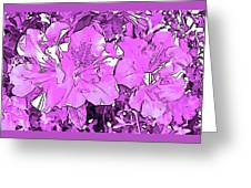 Pink Bevy Of Beauties On A Sunny Day In Violet Greeting Card