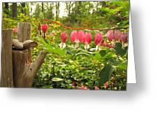 Pink Bleeding Hearts Greeting Card