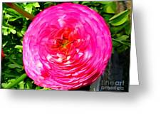 Pink Bloom Greeting Card