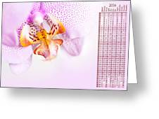 Pink Blotchy Orchid Calendar 2016 Greeting Card