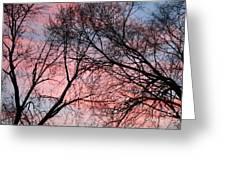 Pink Blue Sky Greeting Card