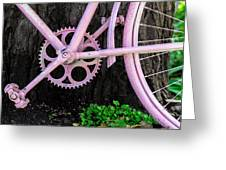 Pink Bycycle Resting On A Tree Greeting Card
