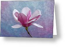Pink Chinese Magnolia Flower Greeting Card