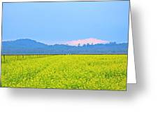 Pink Cloud Over The Mustard Fields Greeting Card