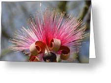 Pink Crown Greeting Card
