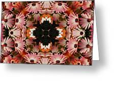 Pink Daisies Kaleidoscope Greeting Card