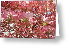 Pink Dogwood Flowering Tree Art Prints Canvas Baslee Troutman Greeting Card