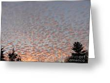 Pink Dotted Sky Greeting Card