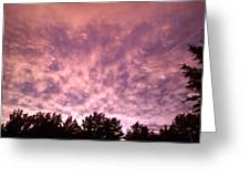 Pink Dusk Greeting Card