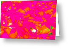 Pink Equalized Greeting Card