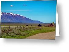 Pink Farmhouse In Mormon Row Greeting Card