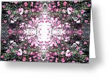Pink Flower Sky Window Greeting Card