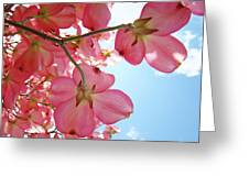 Pink Flowering Dogwood Tree Art Prints Blue Sky Baslee Troutman Greeting Card