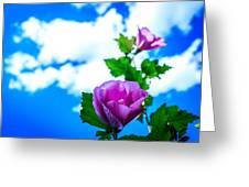 Pink Flowers On A Blue Sky Greeting Card
