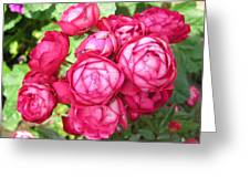 Pink Flowers Greeting Card by Richard Mitchell