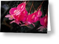 Pink Flowers Greeting Card
