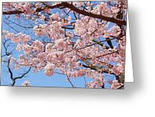 Pink Fluffy Branches Greeting Card