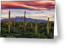 Pink Four Peaks Sunset  Greeting Card