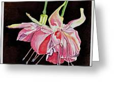 Pink Fuscia Greeting Card