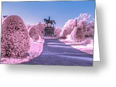 Pink Garden Greeting Card