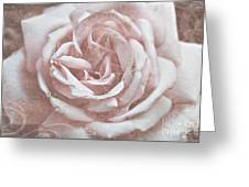 Pink Garden Rose Greeting Card