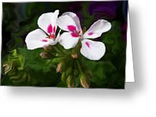 Pink Geranium Swirl Greeting Card
