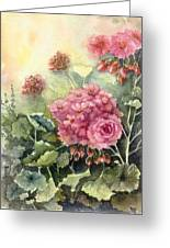 Pink Geranium's  Greeting Card