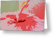 Pink Hibiscus Abstract Greeting Card