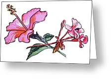 Pink Hibiscus And Geranium  Greeting Card