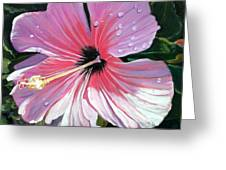Pink Hibiscus With Raindrops Greeting Card