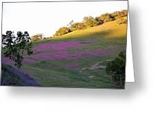 Pink Hills Greeting Card