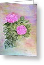 Pink Hydrangeas And Hostas Greeting Card