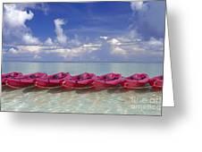 Pink Kayaks Lined Up Greeting Card