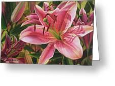 Pink Liliums Greeting Card